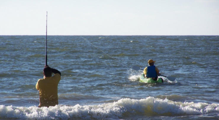 Kayaking at Surfside