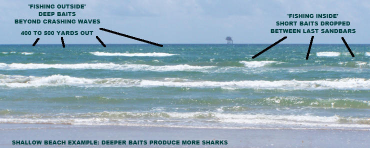 Revising the handbook shark fishing in nc texas for South carolina surf fishing